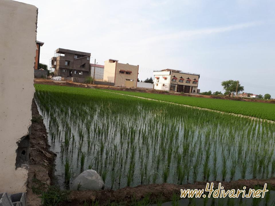 فروش زمین ۱۰۰۰متری در  شهر ساحلی بهنمیر روستای کرفون