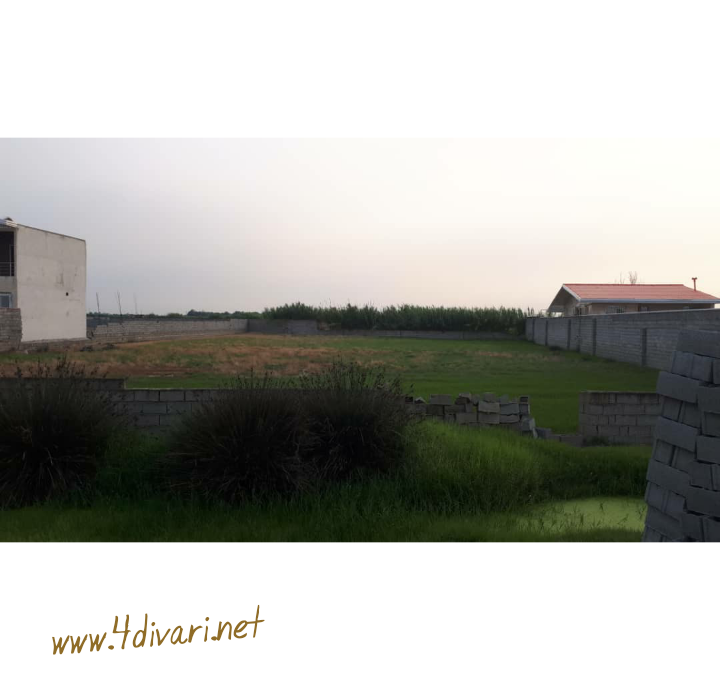 PhotoGrid_1564203392866